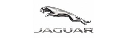 Jaguar/Daimler
